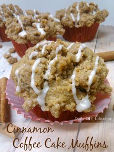 Cinnamon Coffee Cake Muffins! With Extra Crunchy Topping