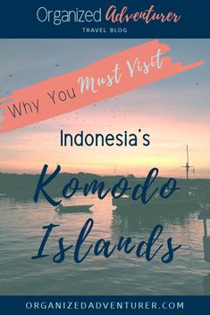This guide will tell you everything you need to know to plan your own Komodo boat trip, from where to see wildlife and the best snorkeling spots! Asia Travel, Solo Travel, Travel Guides, Travel Tips, Travel Articles, Liveaboard Boats, Family Travel, Group Travel, Adventure Travel