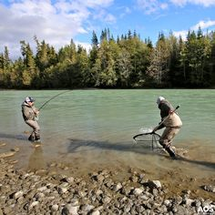 Teamwork!! Great job! #aosfishing #flyfishingmakesyouhappy #flyfishing #fliegenfischen #pescamosca #fluefiske #graz #styria #steiermark #austria #onlineshop #picoftheday #photooftheday #lovefishing #catchoftheday #catchandrelease #onthefly #kescher #landingnet @aosfishing @hatchoutdoors @loop_tackl @simmsfishing @skeenaspeyfishing