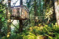 pont  cabane dans les arbres Gazebo, Nature, Camping, Outdoor Structures, House Styles, Green, Design, Image, France