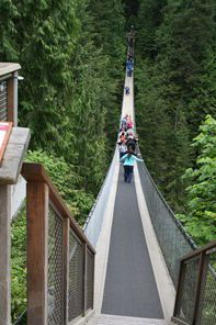 Vancouver North Shore Day Trip with Capilano Suspension Bridge and Grouse Mountain - Vancouver | Viator