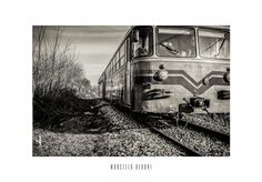 The train - null
