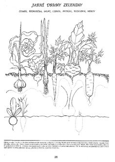 Free Printable Handwriting Worksheets, Preschool Worksheets, Free Printables, Biology, Jar, Tapestry, Autumn, Spring, Decor