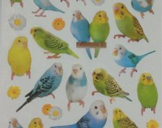 Budgie / Budgerigar / Cockatiel / Parakeet by SweetSuppliesStore