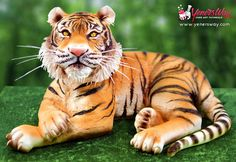 9th Place! 3D Tiger Cake - Cake by Yeners Way - Cake Art Tutorials
