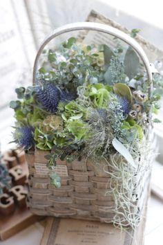 20160505124049 Garden Images, Flower Farm, Ohana, Flower Crafts, Dried Flowers, Blue Bird, Planting Flowers, Flower Arrangements, Floral Design