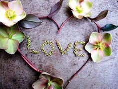 Flower Heart Background Hd Wallpaper, Full Hd Wallpaper, Wallpaper Wallpapers, Valentine Picture, Be My Valentine, Dexter Halloween, Dexter Poster, Love Signs, Love Images