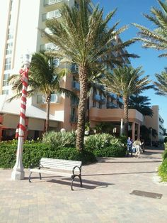The Marriott Hollywood Beach Florida Hollywood Beach Florida, Best Hotels, Amazing Hotels, Home Phone, Trip Planning, Pergola, Sidewalk, Tropical, Outdoor Structures
