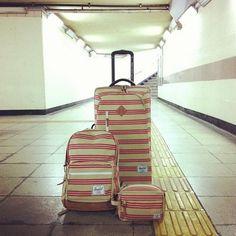 dream luggage.