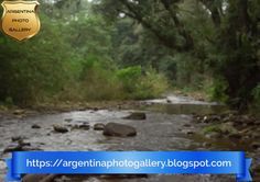 A virtual journey through the national parks of Argentina ( El Rey, intact nature. Animal Species, Aquatic Plants, Flora And Fauna, The Visitors, Conservation, Mammals, Photo Galleries, National Parks, Journey