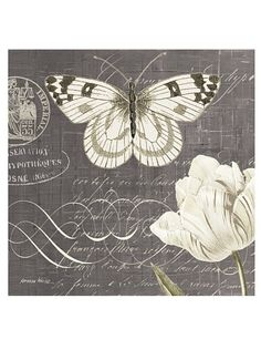 Kathryn White Butterfly Blossom No. 4 x Hand Embellished Canvas . shades of gray . Vintage Butterfly, Vintage Flowers, White Butterfly, Butterfly Canvas, Vintage Pictures, Vintage Images, White Canvas Art, Shabby, Dragonfly Art