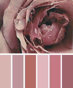 Mauve mood Color Palette,Mauve taupe color inspiration #Mauve #Taupe shades,mauve taupe ,mauve shades,shades of mauve