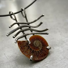 ammonite http://www.fler.cz/zbozi/ammonoidea-4820060