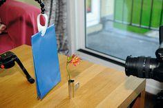 Ustawiamy tło. Wybierzcie takie tło, by zdjęcie było utrzymane w jasnej tonacji i bardziej przyciągało wzrok. U nas za tło posłużyła kolorowa kartka. Wybraliśmy głęboki błękit, który kontrastuje z kolorem kwiatka. Starajcie się eksperymentować z różnymi kolorami i fakturami tła. ZOBACZ WIĘCEJ