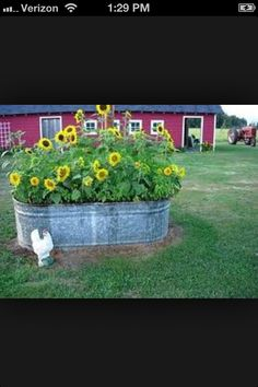 This is way too cute! So country with the sunflowers in there