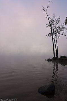 vvv Fog At Sunrise