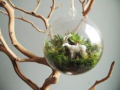 Terrarium made from glass ornament and plastic farm animals.