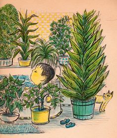 my vintage book collection (in blog form).: The Plant Sitter - illustrated by Margaret Bloy Graham