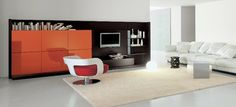 european cabinets - modern - living room - san francisco - European Cabinets & Design Studios