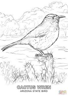 Arizona State Bird Coloring Page