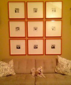 photo gallery wall using ikea ribba frames painted orange, custom matting for disparate photo sizes
