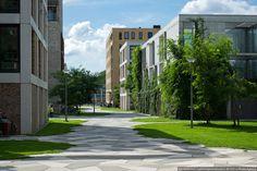 Тротуары и газоны. Квартал Фуненпарк в Амстердаме – varlamov.ru