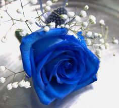 Lovely pin-on blue corsage that really pops out.