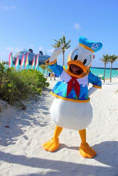 Donald Duck, Disney Cruise Ship, and Castaway Cay. Three of my FAVORITE things when it comes to Disney!