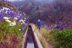 Wanderurlaub auf Madeira - 8 Tipps für einen perfekten Wanderurlaub auf Madeira, Portugal