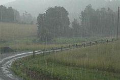 Farmers welcome August rain - ABC News (Australian Broadcasting . Morning Rain, Early Morning, Smell Of Rain, Welcome Winter, Sound Of Rain, Rain Storm, Love Rain, Rainy Days, Rainy Night