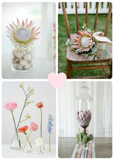 Some Protea inspiration Display Design, Party Time, Claire, Dream Wedding, Wedding Ideas, Rustic, Table Decorations, My Love, Flowers