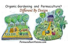 Difference Between Organic Gardening and Permaculture - Permaculture Visions