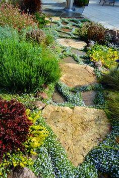 California Craftsman Hillside Garden - traditional - Landscape - San Francisco - Aitken and Associates