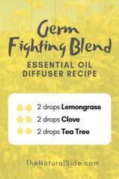 Germ Fighting Blend 2 drops Lemongrass + 2 drops Clove + 2 drops Tea Tree New to Essential Oils? Searching for Simple Essential Oil Combinations for Diffuser? Check out these 21 Easy Essential Oil Blends and Essential Oil Recipes Perfect for Beginners. Essential Oils For Pain, Essential Oil Diffuser Blends, Doterra Essential Oils, Young Living Essential Oils, Yl Oils, Oils For Diffuser, Tea Tree Oil Diffuser, Lemongrass Essential Oil Uses, Homemade Diffuser