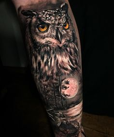 Owl Forearm Tattoo, Owl Eye Tattoo, Mens Owl Tattoo, Animal Sleeve Tattoo, Owl Tattoo Drawings, Arm Sleeve Tattoos, Tattoo Sleeve Designs, Owl Tattoos, Animal Tattoos For Men
