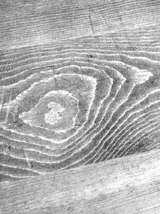 rough lumber stain