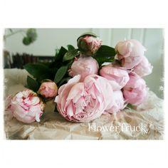 Beauty on a table! #flowers #flowertruck #pink #beautiful
