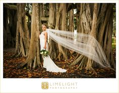 wedding day, bride, bouquet, wedding dress, veil, limelight photography, www.stepintothelimelight.com