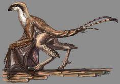 Yi qi-The Bizarre Wings by KookaburraSurvivor on DeviantArt Prehistoric Wildlife, Prehistoric Creatures, Alien Creatures, Fantasy Creatures, Evolutionary Biology, Dinosaur Pictures, Fantasy Beasts, Spinosaurus, Alien Art