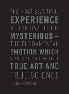 We can all take a page from Albert Einstein's inspirational quote regarding true art and science. Art Quotes, Inspirational Quotes, Science Quotes, General Electric, True Art, Albert Einstein, Food For Thought, Science And Technology, Wise Words