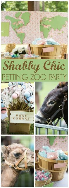 This pretty shabby chic party even has a petting zoo!  See more party ideas at CatchMyParty.com!