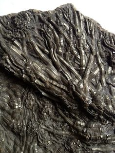 Stunning pyrite fossil crinoid sea lilies by Cyclopaedia on Etsy, £399.00
