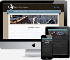 Check out some of our completed projects. Horse Adoption, The Outsiders, Web Design, Success, Check, Projects, Log Projects, Design Web, Blue Prints