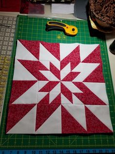 Poinsettia block.