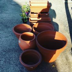 Garden centre shopping never spent so much on #pots and soil. The soil is locally produced but the #terracotta is from Italy.  #goinggreen #sustainableliving Maybe?