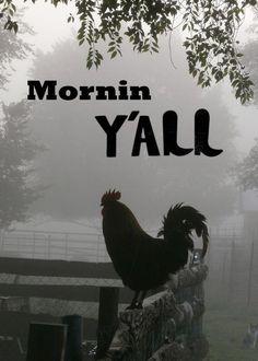 Mornin Y'all