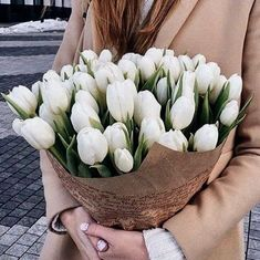 White Tulip Bouquet, Yellow Tulips, Spring Aesthetic, Flower Aesthetic, Key To My Heart, Shades Of Purple, Amazing Flowers, Her Hair, Flower Arrangements