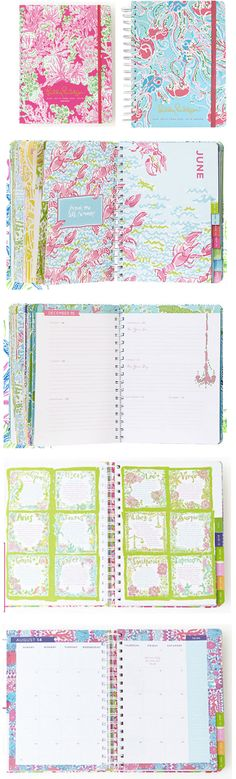 Must have a pretty agenda! For August 2014 - December 2015 http://rstyle.me/n/jktrsnyg6