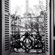 Room with a view.. - Copyright Carla Coulson
