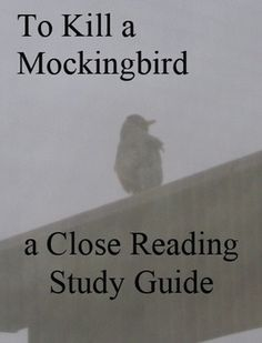 seeing through another persons view in to kill a mockingbird by harper lee Five quotes about perspective in to kill a mockingbird one of atticus's first lessons to his children in the novel is delivered to scout after her disappointing first day at school with miss caroline.